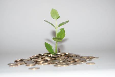 Growing Popularity for Green Energy and Ethical Banking
